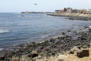Dix raisons de visiter le Sénégal